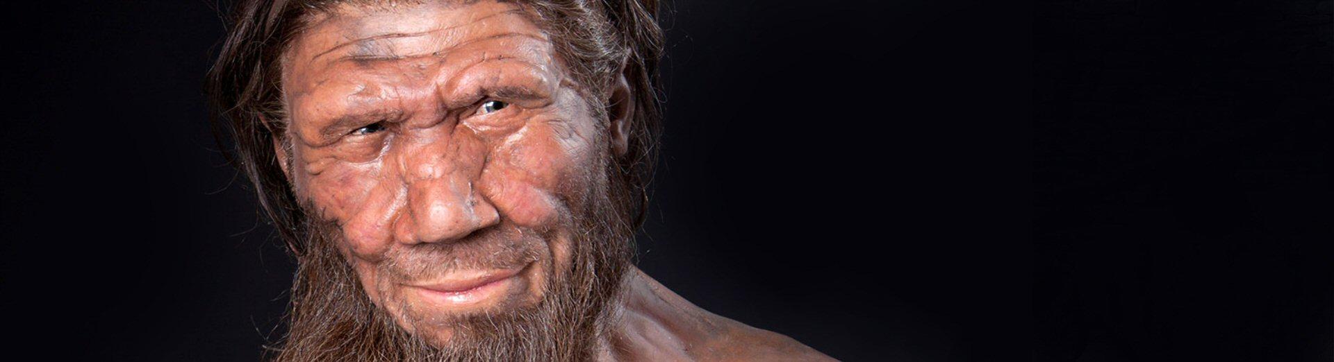96-evoluzione genetica e culturale